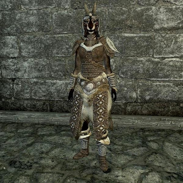 scaled_armor_skyrim