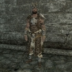 light_scaled_skyrim-105